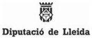 Diputació de Lleida_web