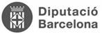 Diputació Barcelona copia