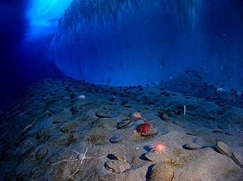 1024px-Underwater_mcmurdo_sound